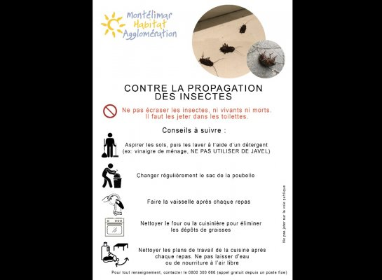 DESINSECTISATION / Info locataires